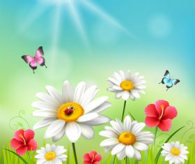 Color butterfly and chamomile flower vector