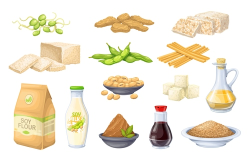 Food elements icons for design vector