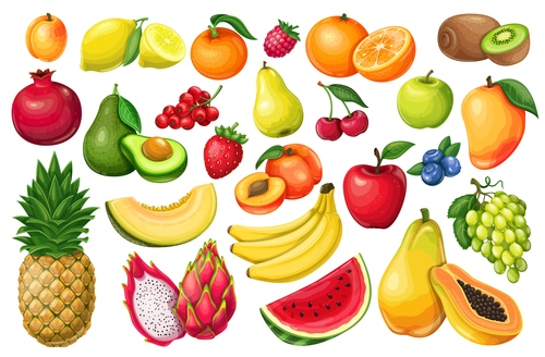 Fruit icons for design vector
