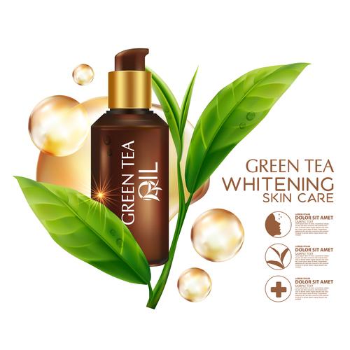 Green tea oil plant essence vector