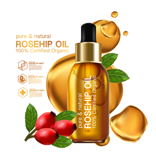 High quality plant essence cosmetics vector