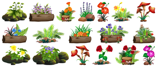 Nature flowers and grass vector