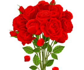 Red rose bouquet vector