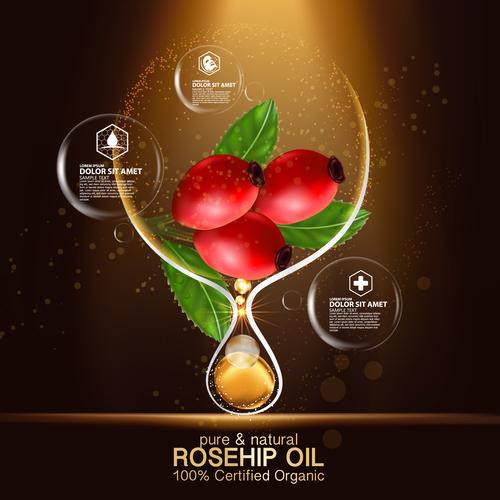 Rosehip oil cosmetic vector