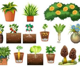 Set different plants pots background vector