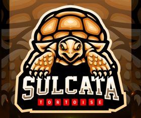 Sulcata tortoise mascot emblem vector