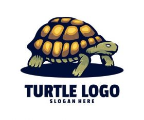 Turtle logo design vector