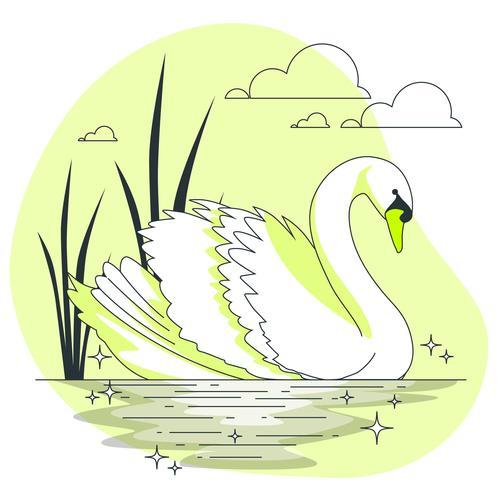 White swan illustration vector
