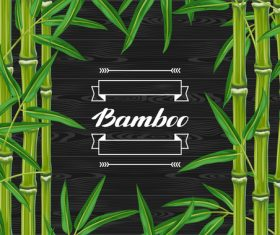 Bamboo background frame vector