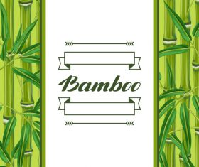 Bamboo watercolor background frame vector
