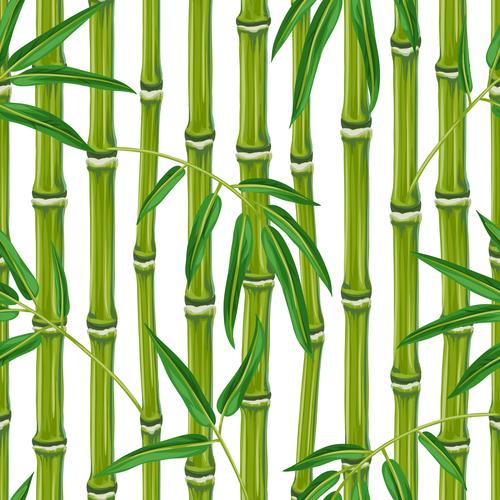 Bamboo watercolor painting vector