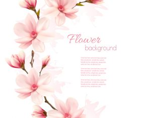 Beauty nature frame with pink magnolia vector