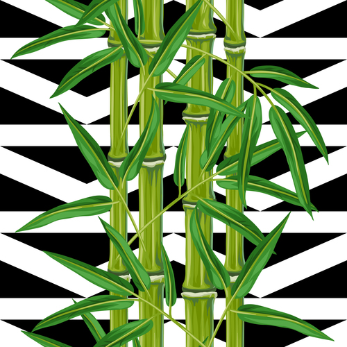Black and white background bamboo watercolor painting vector