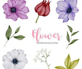 Blooming flower watercolor collection vector