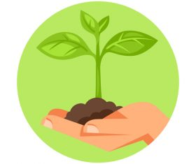Caring for seedlings illustration vector