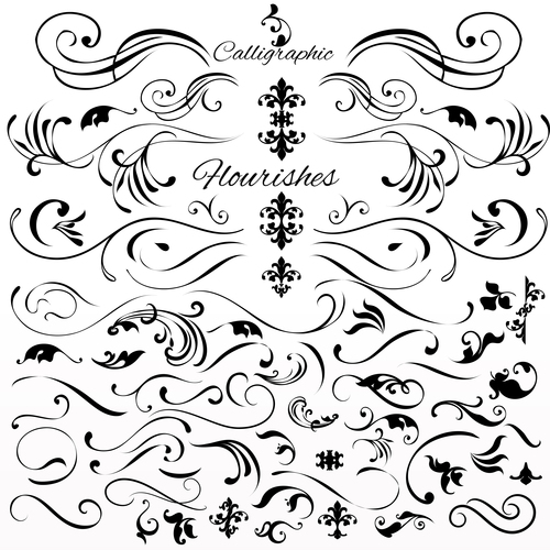Collection or set of vintage styled calligraphic elements or flourishes vector