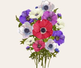Colorful flowers watercolor background vector