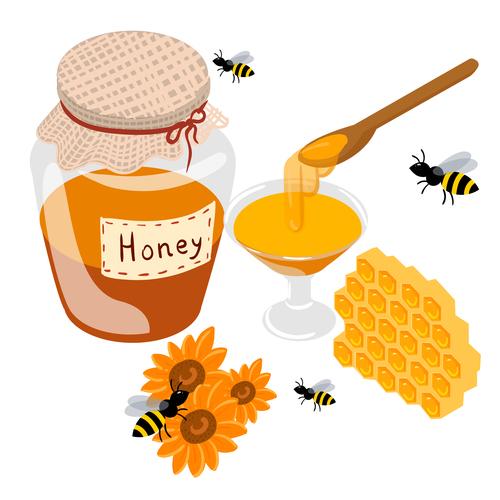 Element honey background vector