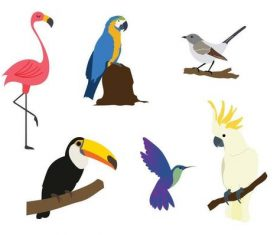 Exotic tropical birds vector