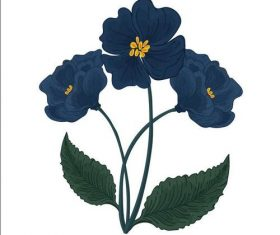 Flower illustration vector