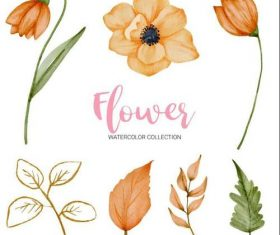 Flowers and green leaves watercolor collection vector