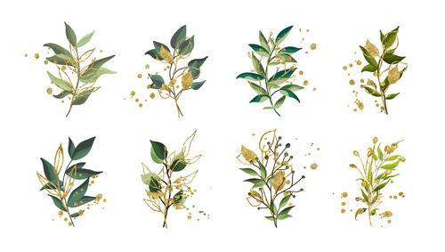 Golden green tropical leaves vector