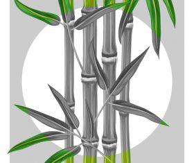 Gray bamboo in vector