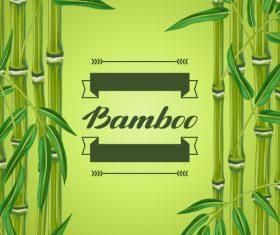 Green bamboo background frame vector