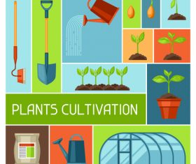 Greenhouse cultivation vector