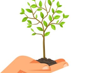 Hand with sapling vector