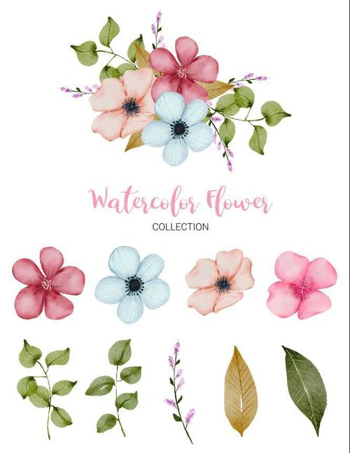 Leaves and flowers watercolor collection vector