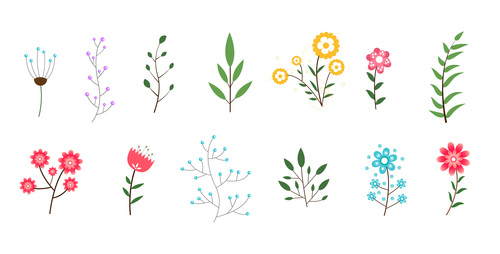 Minimal flowers leaves vector