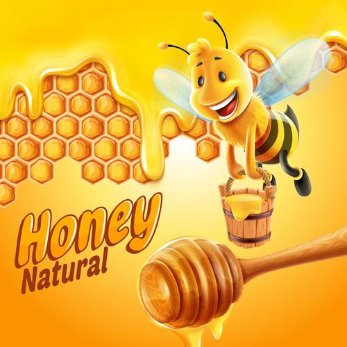 Natural honey bee vector