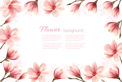 Nature frame with pink magnolia flowers vector
