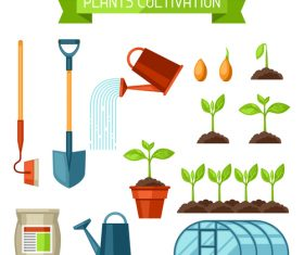 Plants cultivation vector