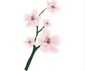 Plum blossom watercolor painting vector
