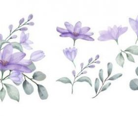 Purple flowers and leaves watercolors vector
