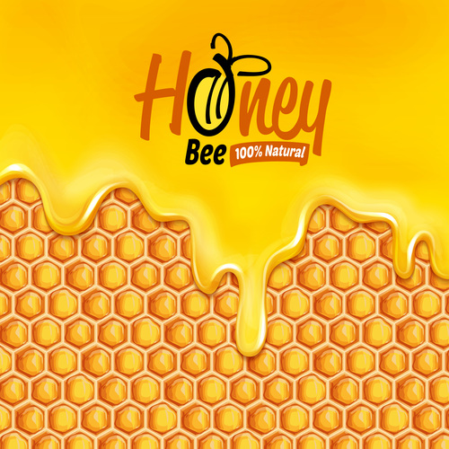 Quality honey natural vector