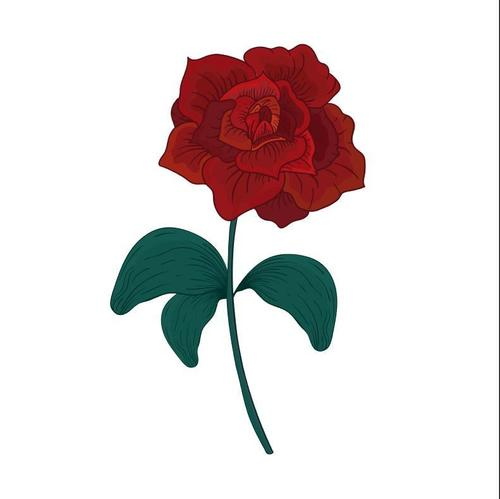 Red rose watercolor painting vector