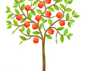 Ripe fruit vector