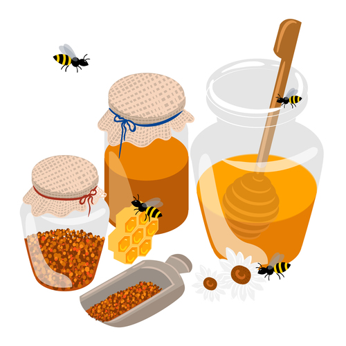 Seed and honey background vector