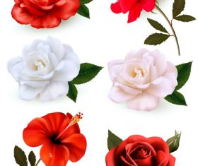 Set of colorful flowers vector