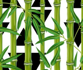 Triangle background bamboo watercolor painting vector