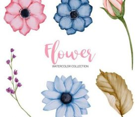 Watercolor technique flower collection vector