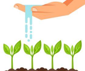 Watering seedlings illustration vector