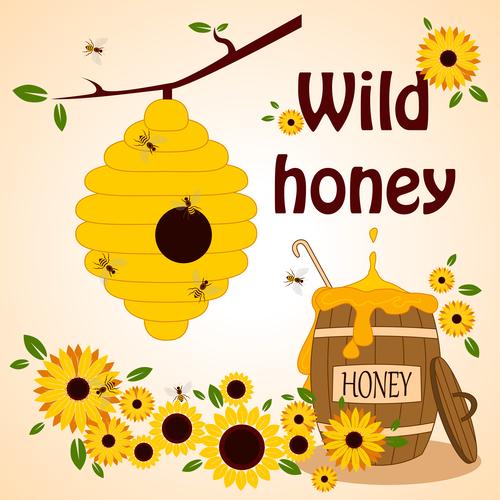 Wild honey illustration vector