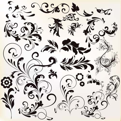 collection of calligraphic vector vintage design elements