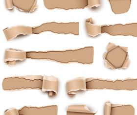 All kinds of ripped paper background vector