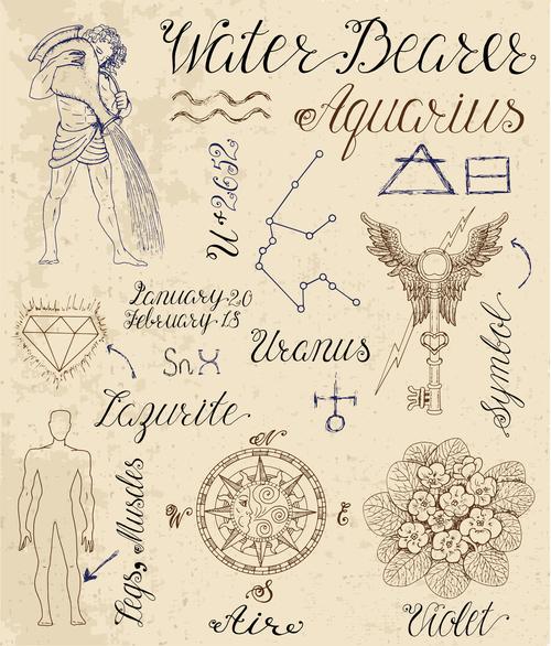 Aquarius or Water Bearer zodiac sign vector