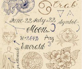 Cancer or crab zodiac sign vector